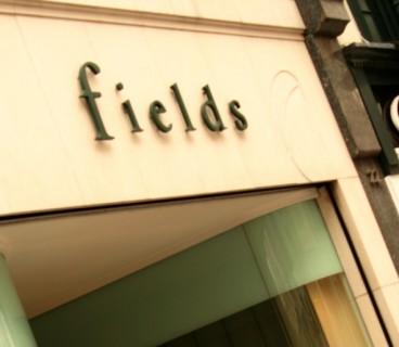 Fields_11