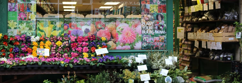 A visit to Mr Middleton Garden Shop DublinTown
