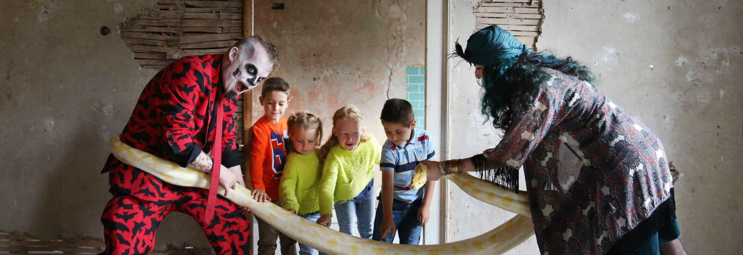 5 Things To Do With The Kids This Halloween in Dublin!