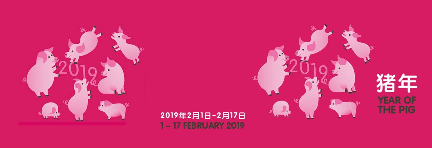 Dublin Chinese New Year Festival Celebrates Year of the Pig